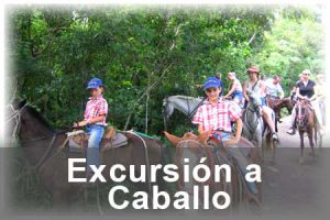segarrulls-excursion-caball